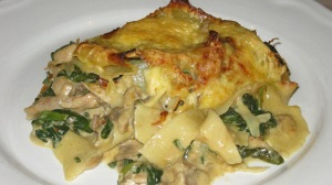 kip spinazie porcini pasta overgerecht